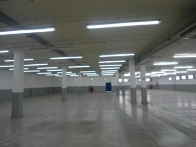 Galpão Padrão-Vila Guilherme/São Paulo